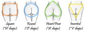 what-butt-shape-am-i